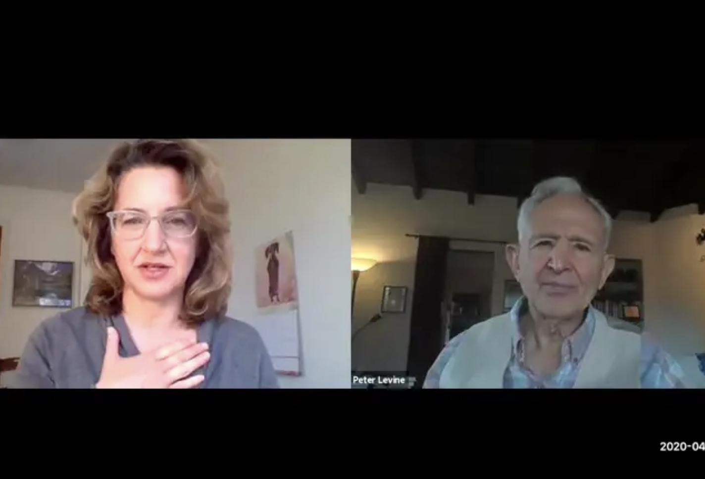 Peter Levine & Dafna Lender Webinar