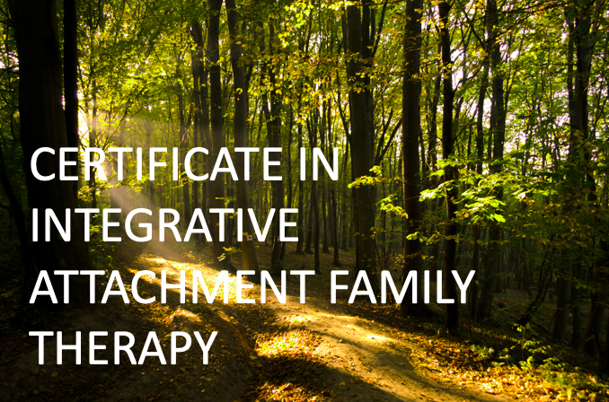 Integrated Attachment Family Therapy Training without CE